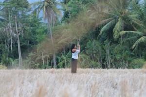 Artjanna Indonesie